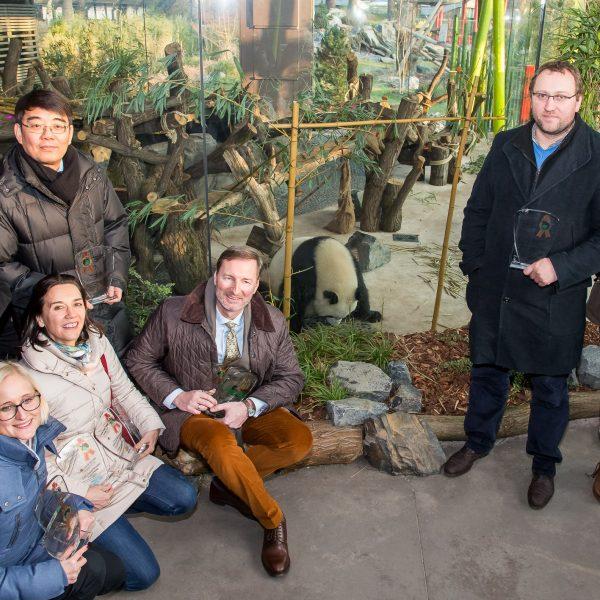 Yuan Meng élu «bébé panda de l'année» ! - ZooParc de Beauval