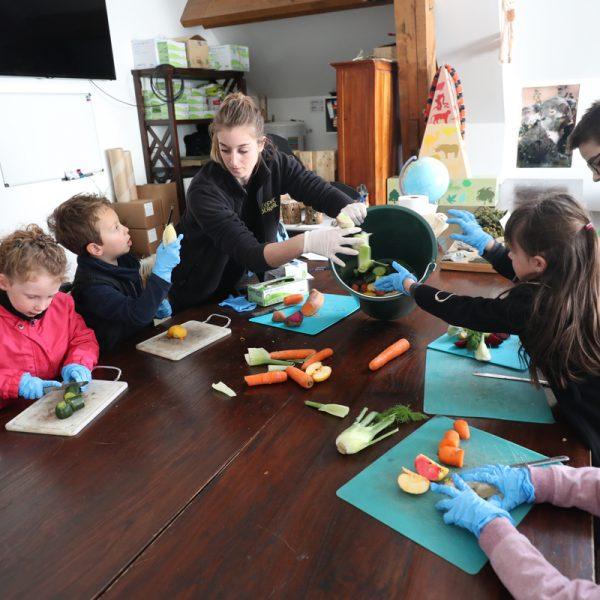 Nouvelles activités : A tester ! - ZooParc de Beauval