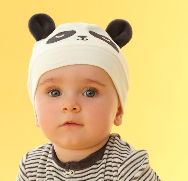 Z fait sa Panda party ! - ZooParc de Beauval