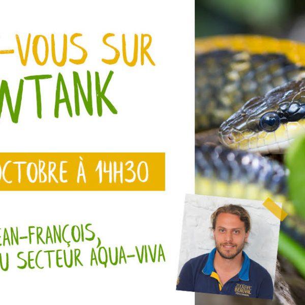 Discutez avec un animalier - ZooParc de Beauval