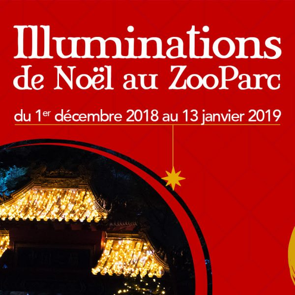 Vivez la magie de Noël à Beauval - ZooParc de Beauval