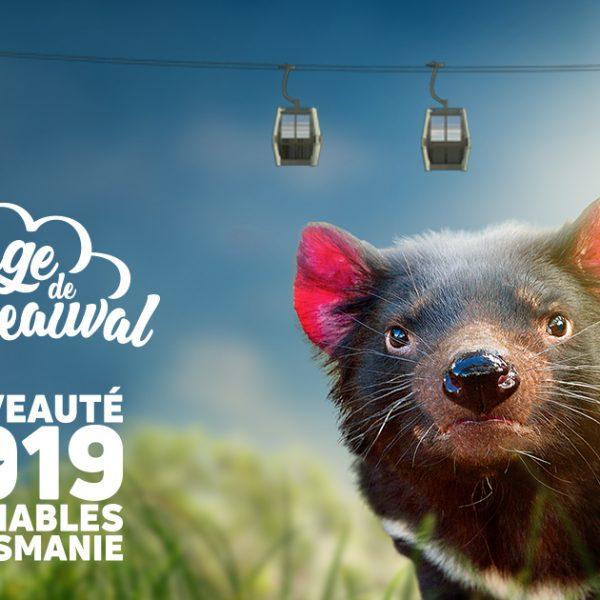 Nos nouveautés 2019 ! - ZooParc de Beauval