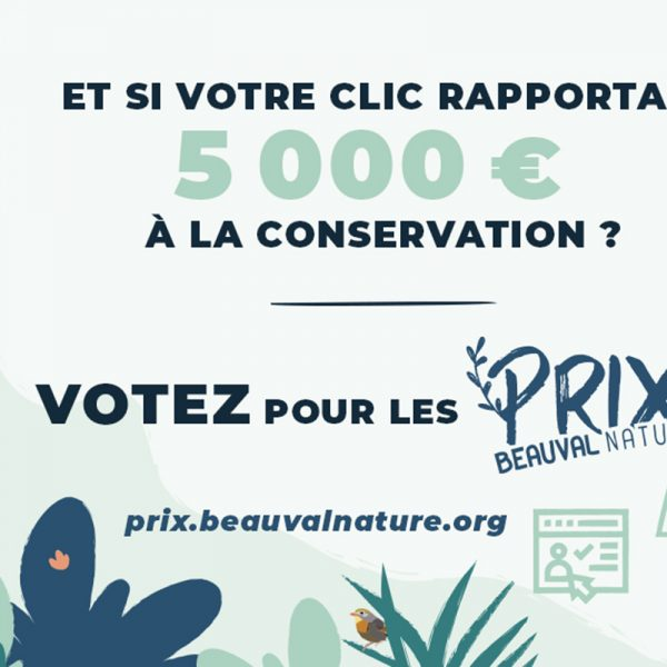 Votez pour la conservation avec les Prix Beauval Nature ! - ZooParc de Beauval