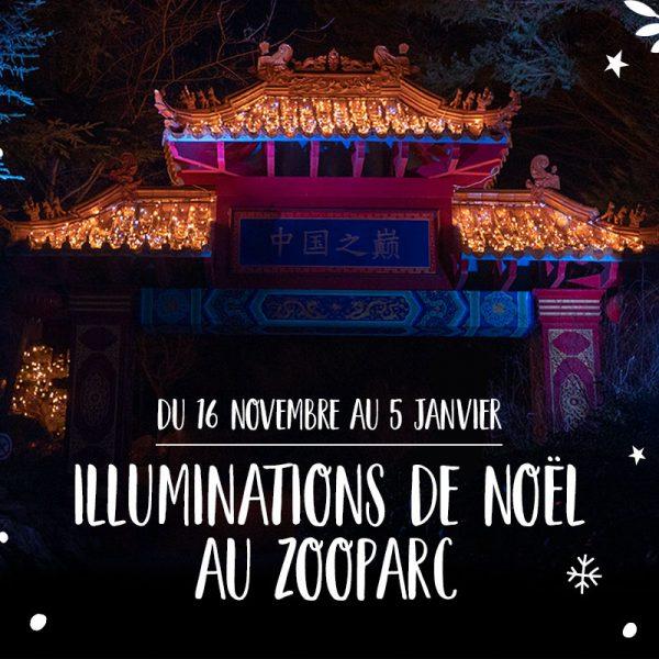 Un Noël magique au ZooParc de Beauval - ZooParc de Beauval