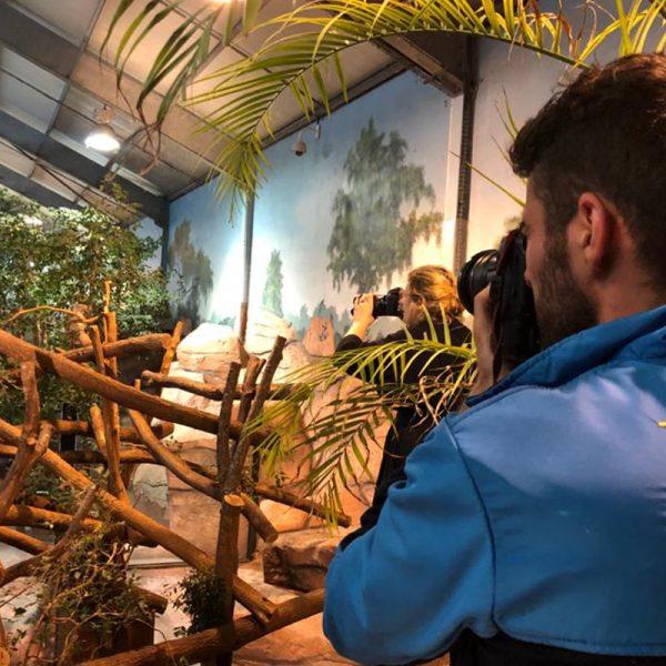 Beauval Nature s'associe au studio Harcourt pour l'Australie - ZooParc de Beauval