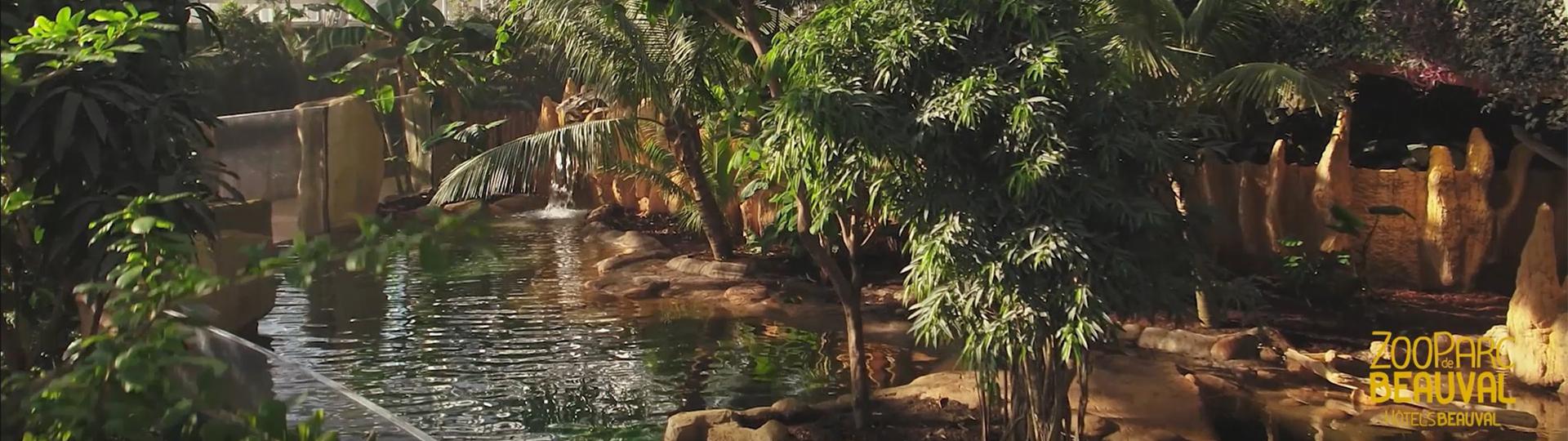 vegetation-dome