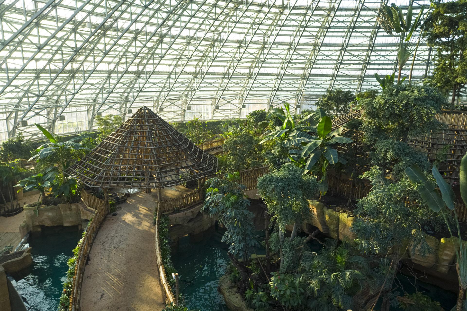 plantes_dome