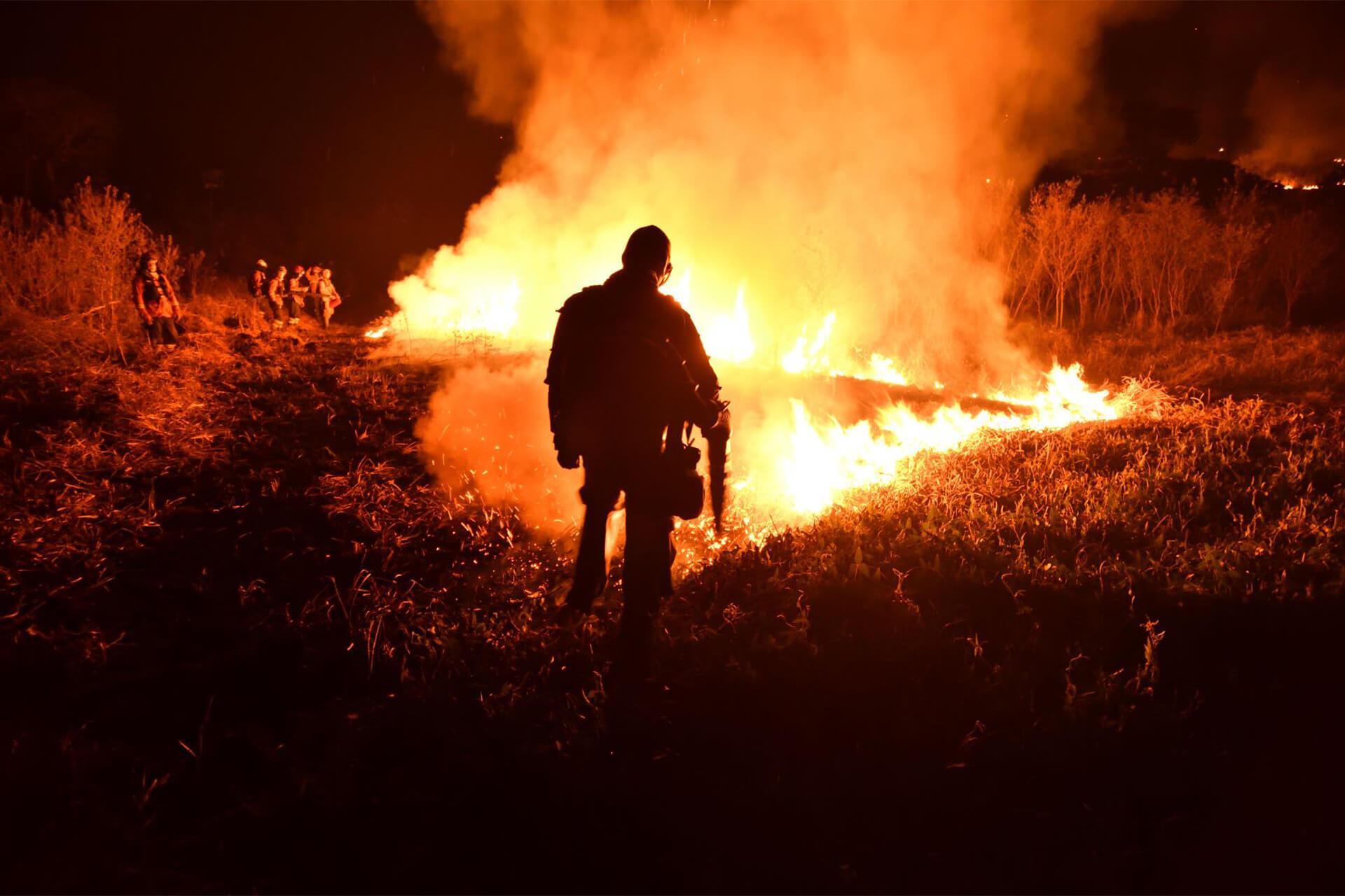incendies Pantanal au Brésil