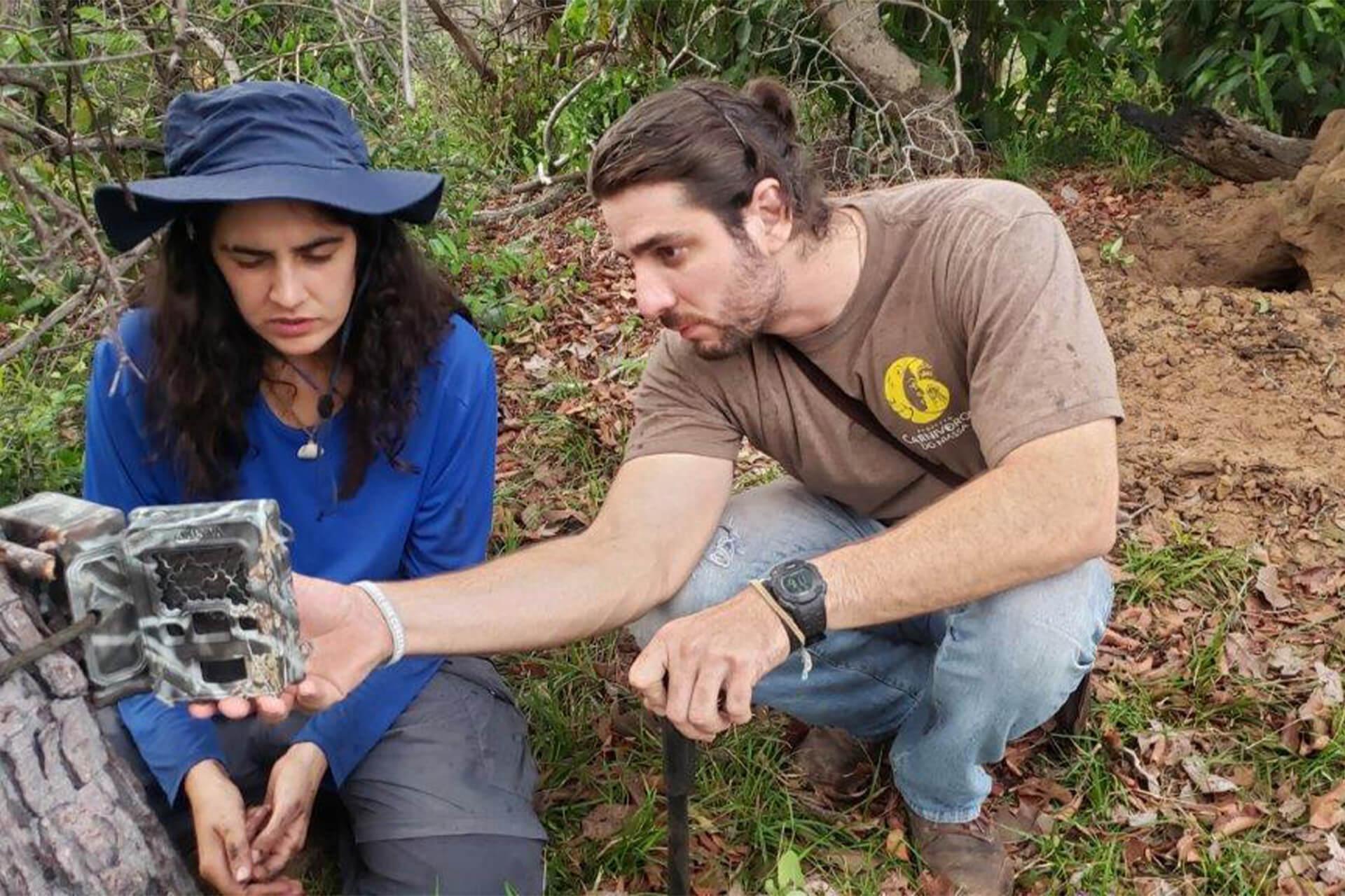 caméra-piège installée dans le Pantanal